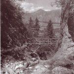 Erlebnis-Steig in die Aubachschlucht - erbaut mit Wörgler Freigeld. Foto: Unterguggenberger Institut Archiv