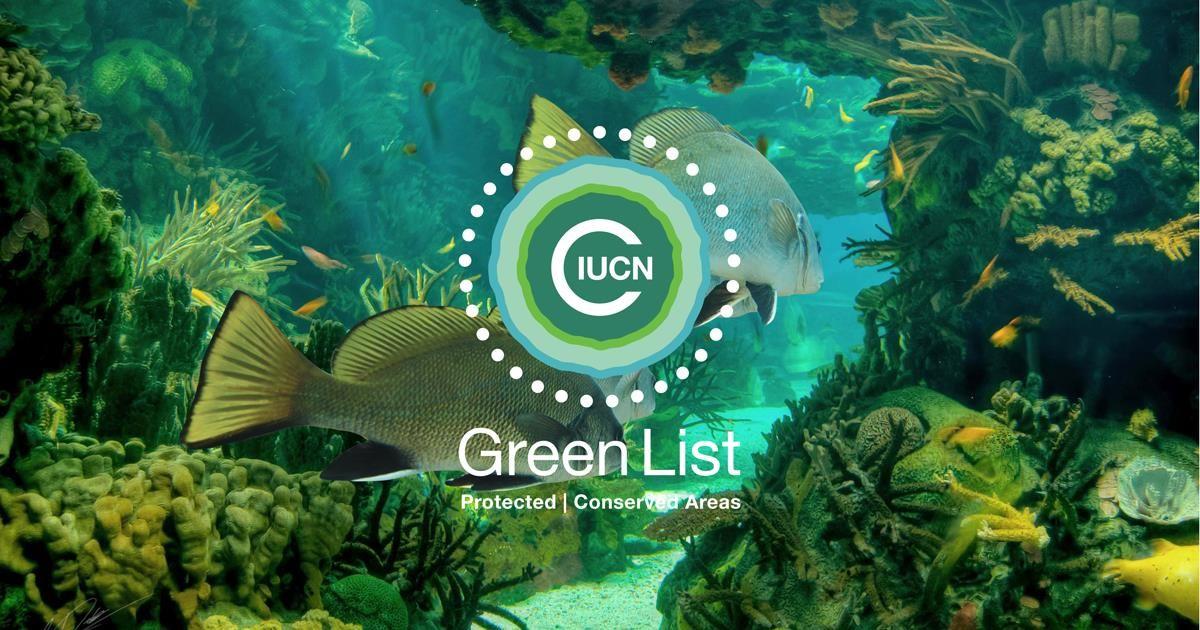 IUCN hat die erste Naturschutzapplikation für eine Cryptowährung geschaffen– den Grüne Liste Token, der am Sonntag, den 26. November auf den Markt kommt. Foto: GLS https://gls.porini.foundation/de